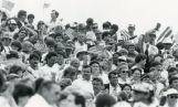 Spectators at Olympic water polo match at Pepperdine University, 1984